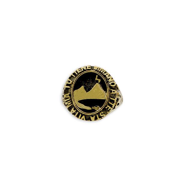 Anello vesuvio bronzo